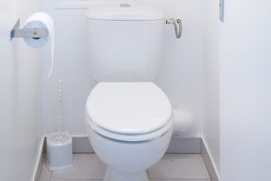 renovation WC