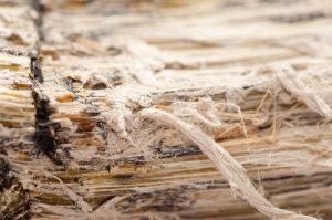 fibre amiante